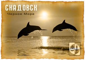 морские сувениры Джарылгач скадовск